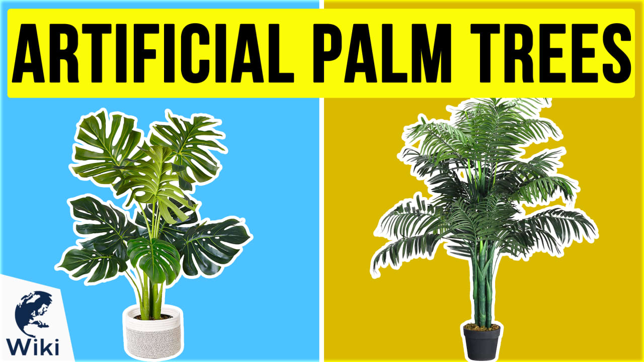 10 Best Artificial Palm Trees