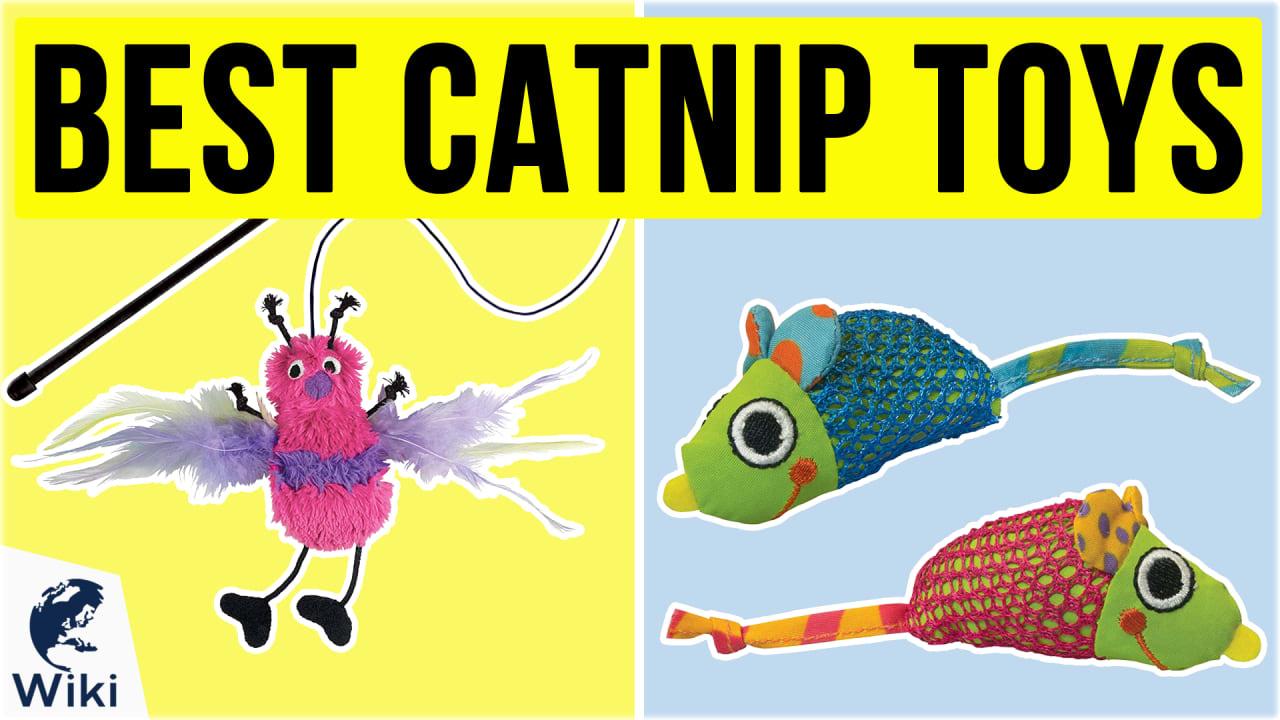 10 Best Catnip Toys