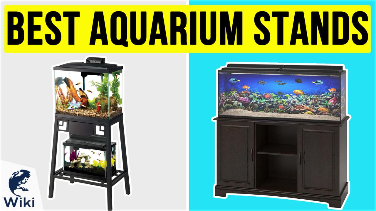 8 Best Aquarium Stands
