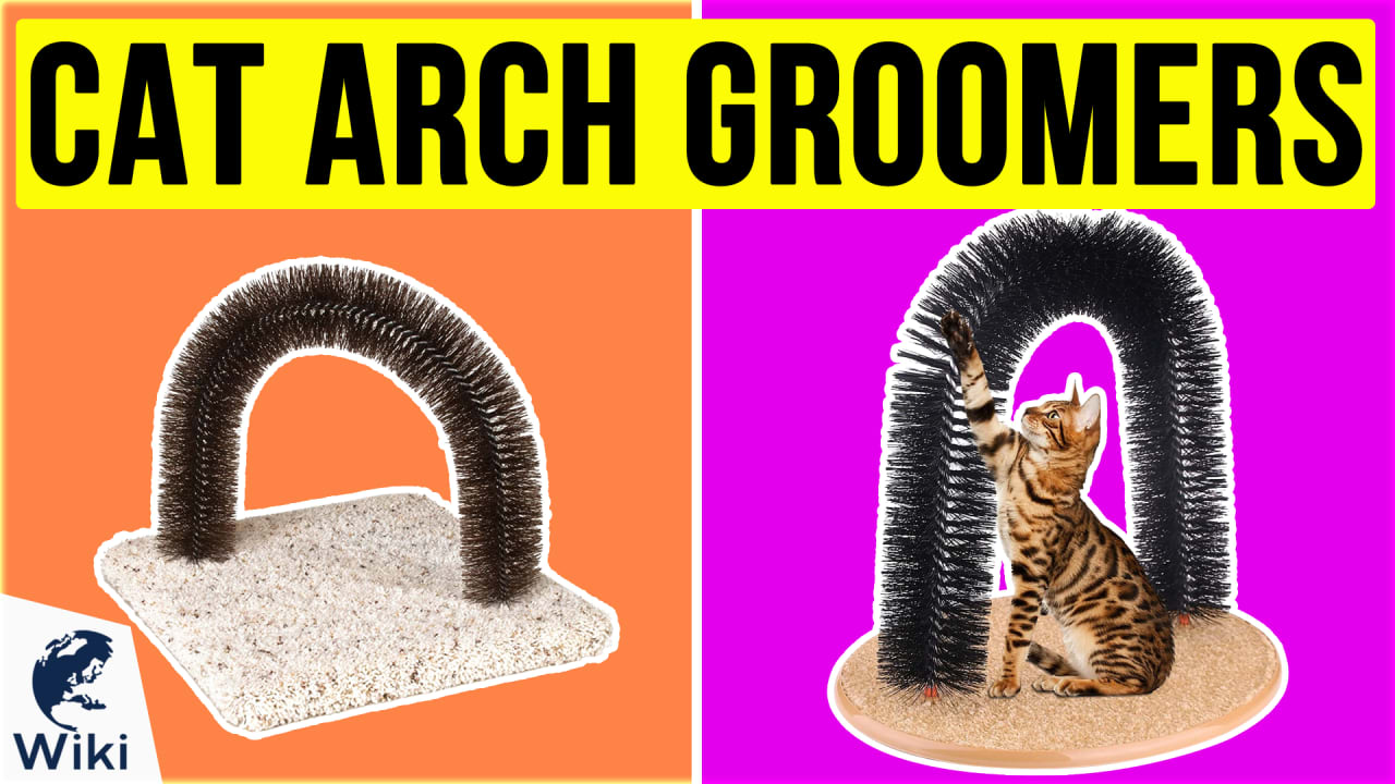 9 Best Cat Arch Groomers
