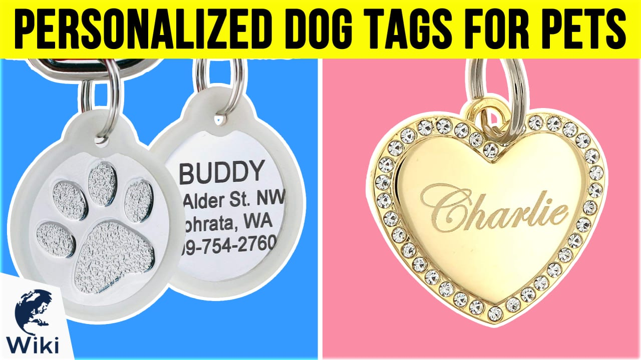 10 Best Personalized Dog Tags For Pets