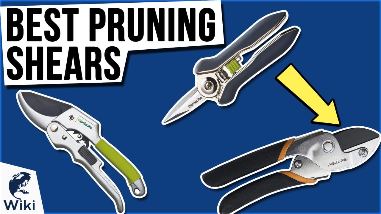 10 Best Pruning Shears