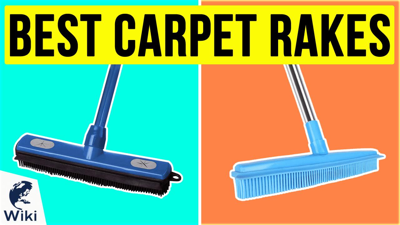 10 Best Carpet Rakes