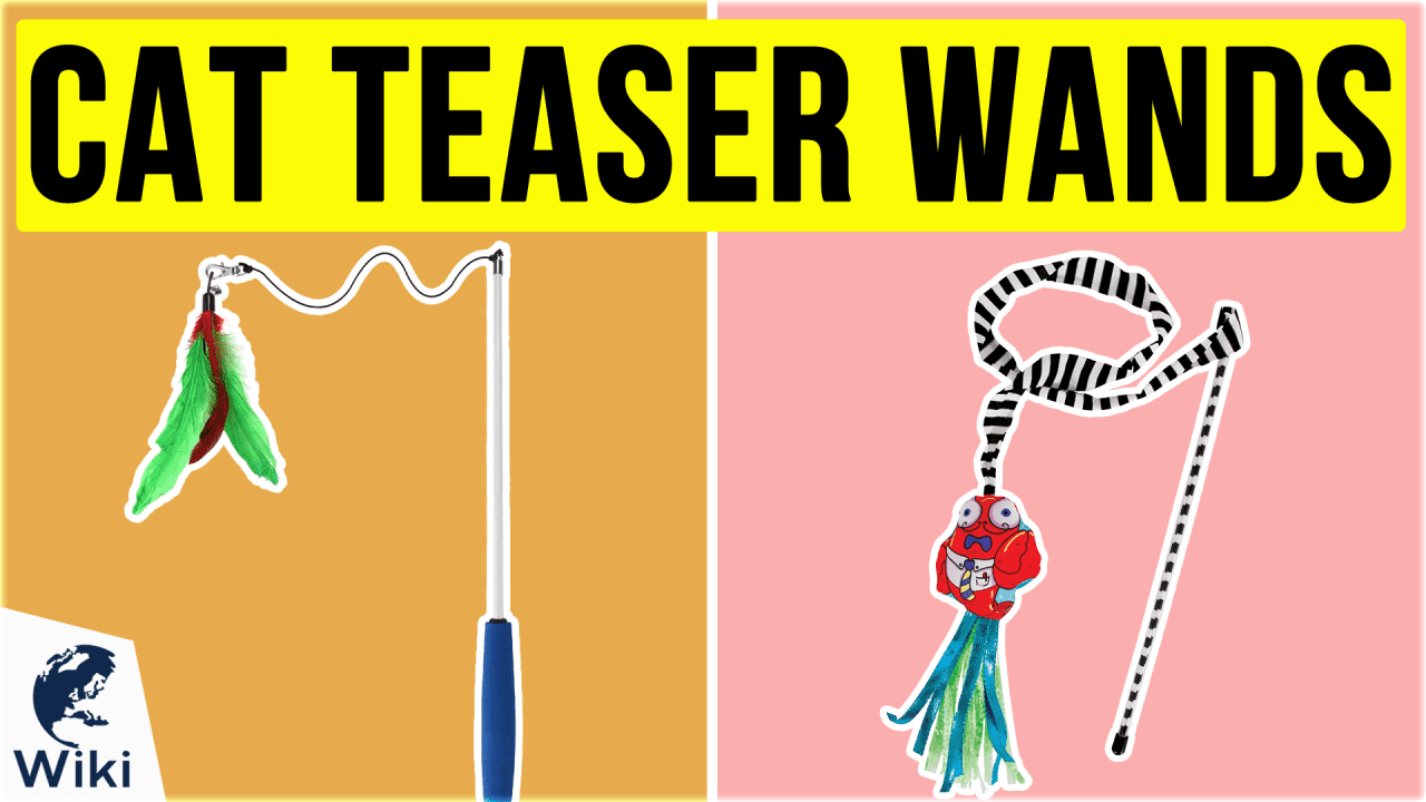 10 Best Cat Teaser Wands