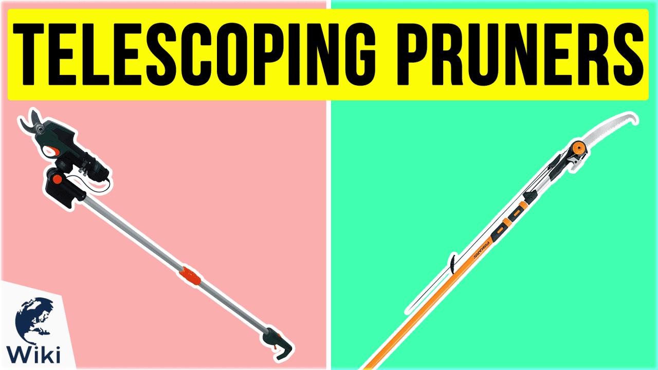 10 Best Telescoping Pruners