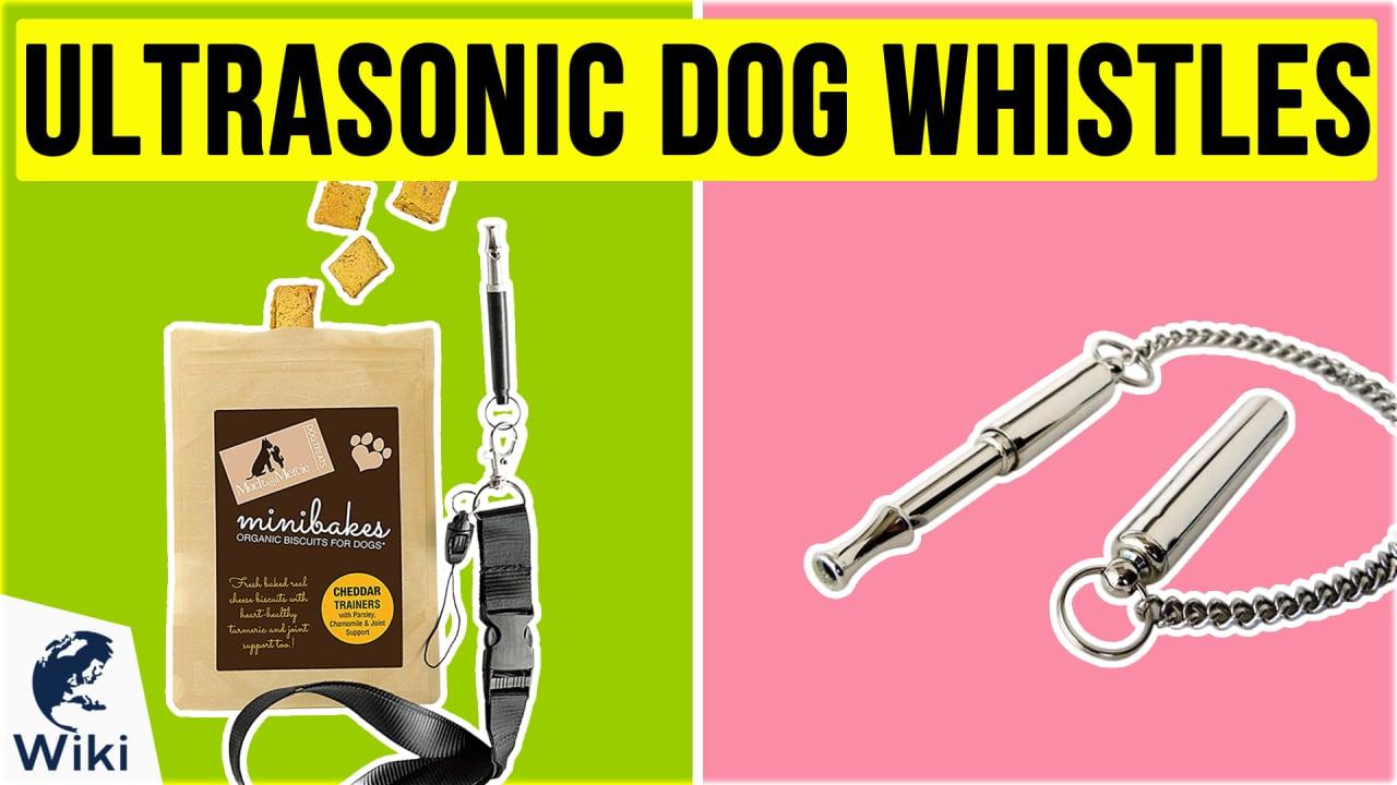 5 Best Ultrasonic Dog Whistles