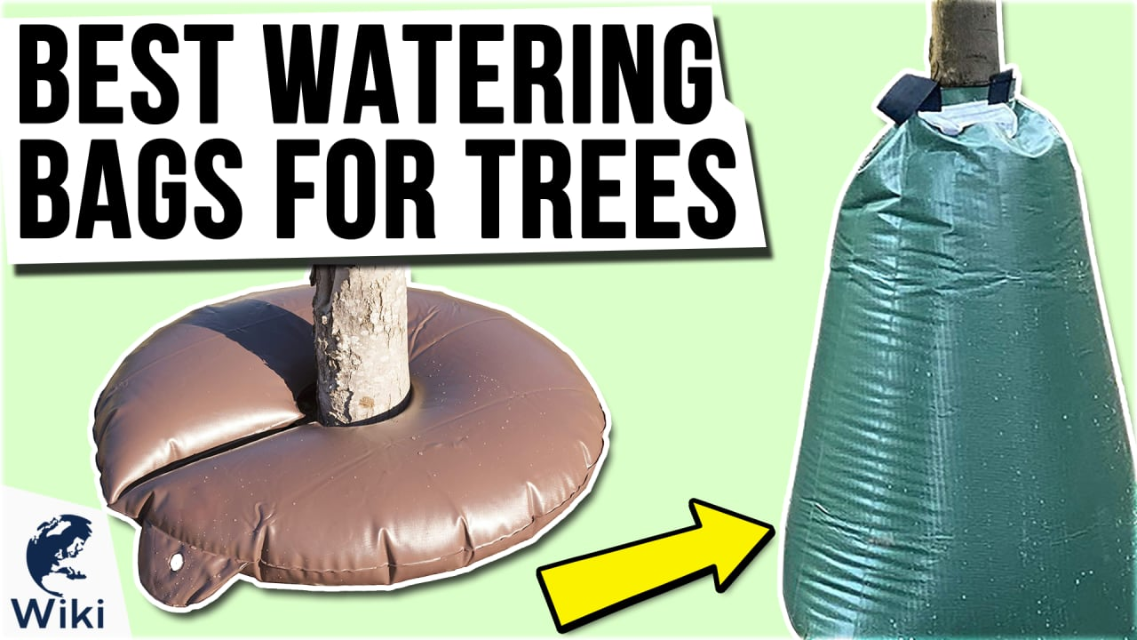 10 Best Watering Bags For Trees