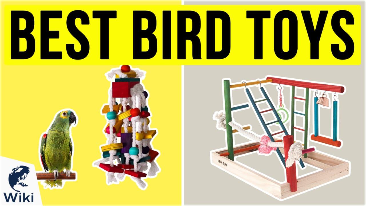 10 Best Bird Toys