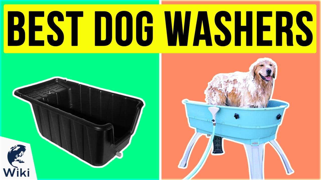 10 Best Dog Washers