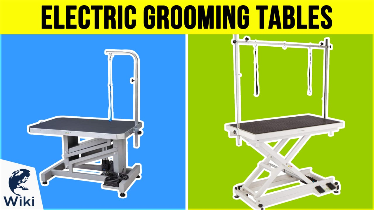 6 Best Electric Grooming Tables