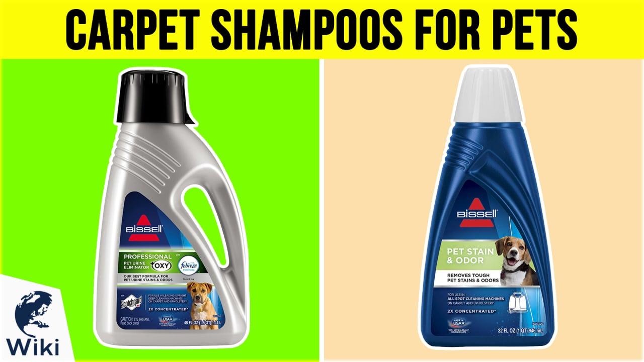 10 Best Carpet Shampoos For Pets