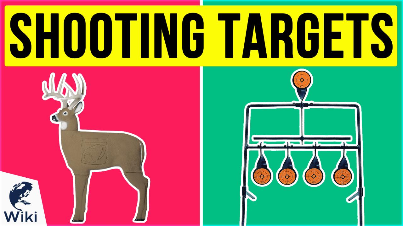 10 Best Shooting Targets