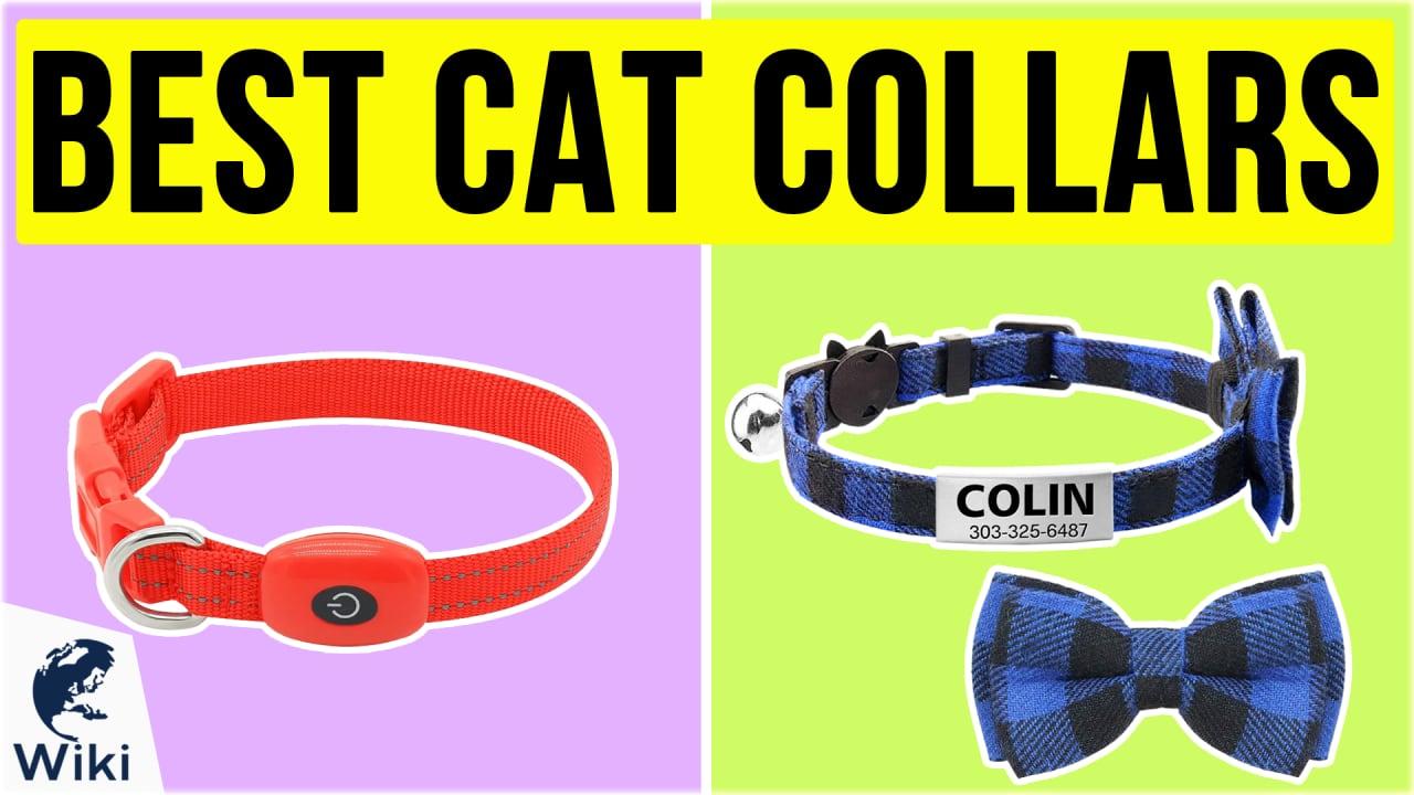 10 Best Cat Collars