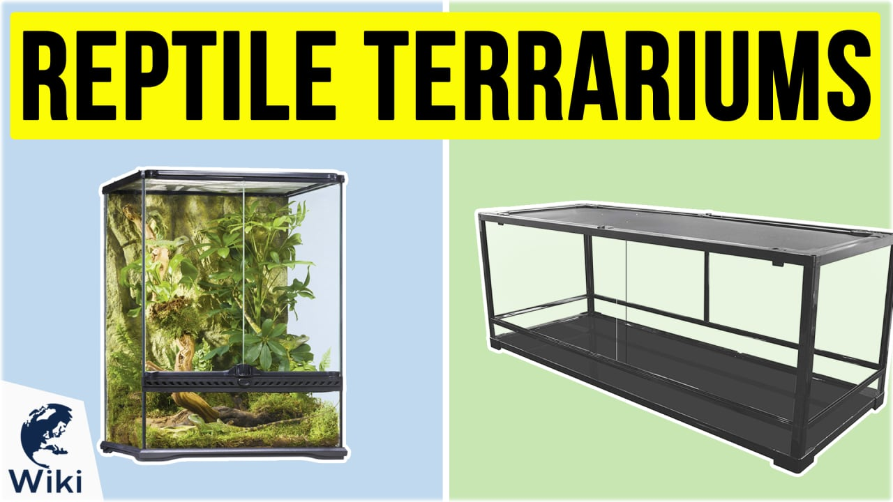 10 Best Reptile Terrariums