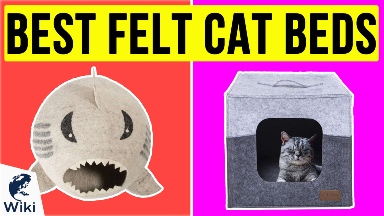 10 Best Felt Cat Beds
