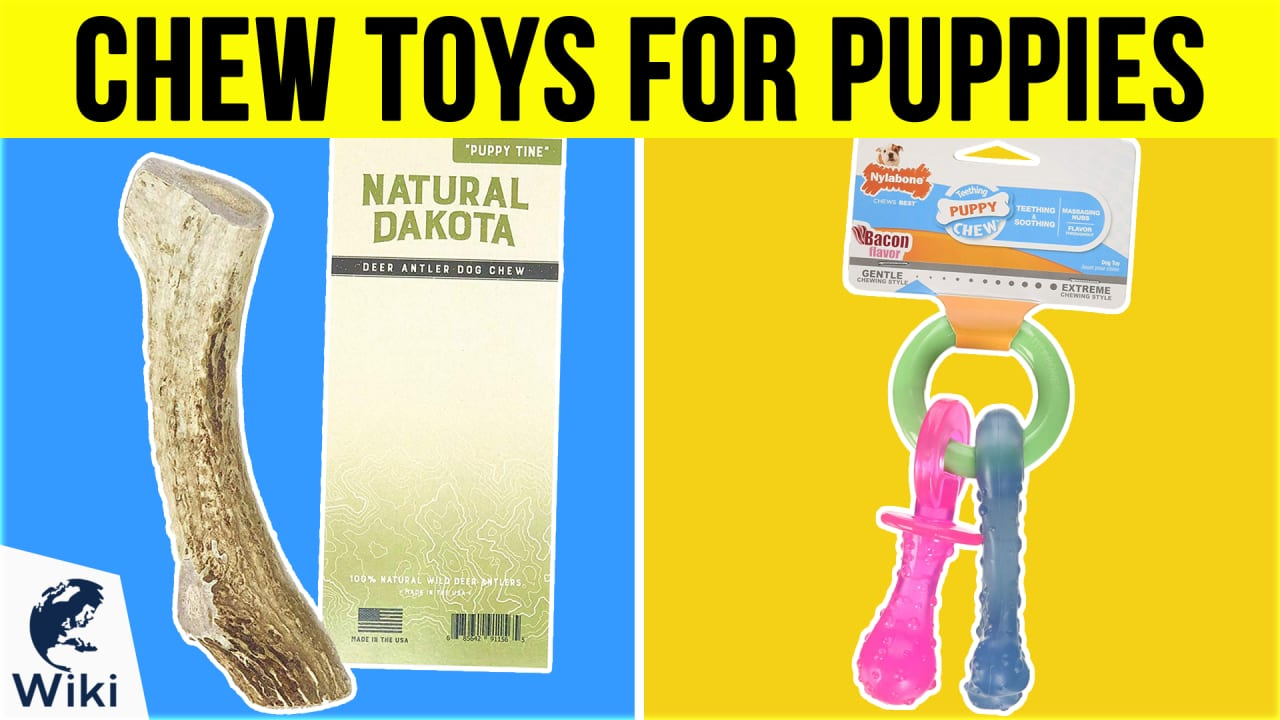 10 Best Chew Toys For Puppies