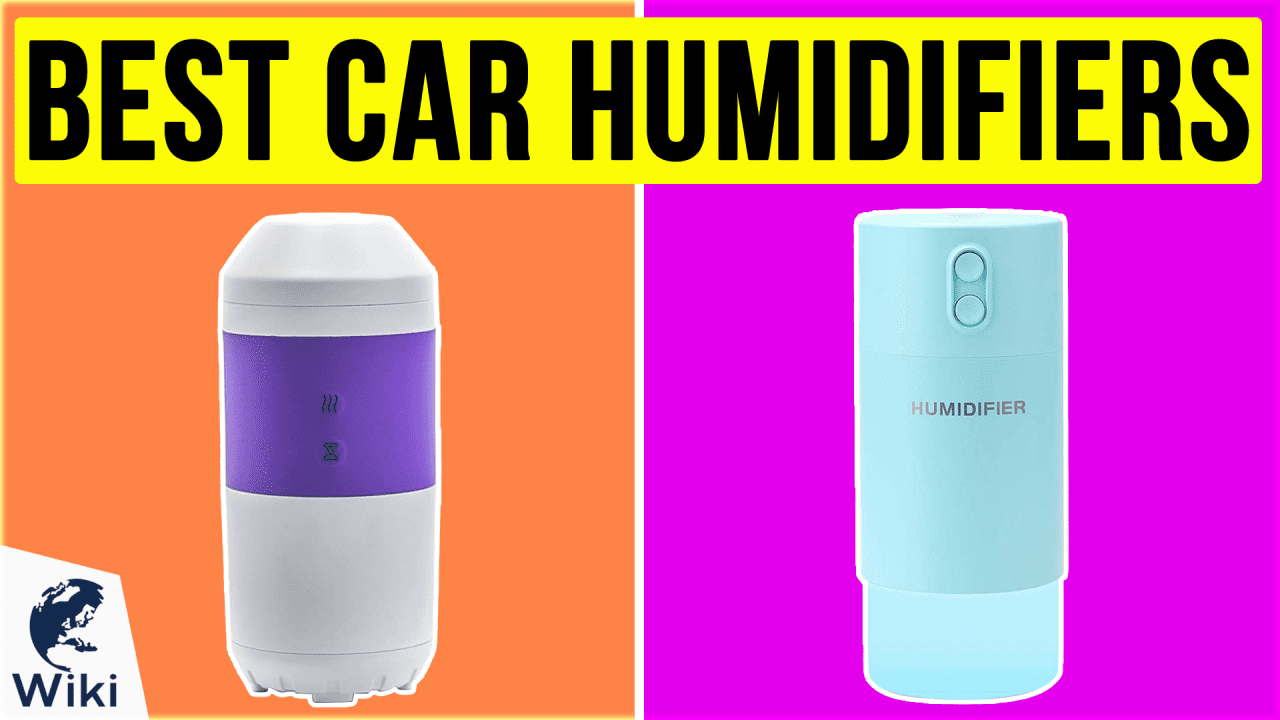 10 Best Car Humidifiers