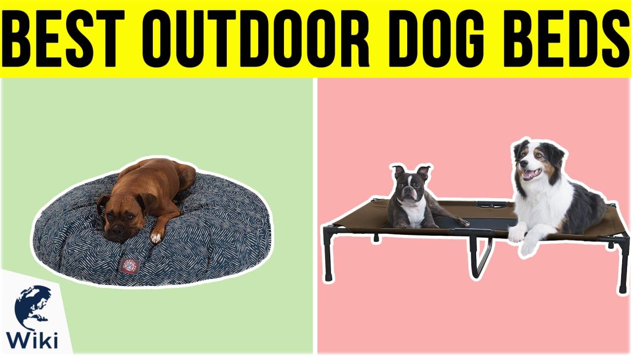 10 Best Outdoor Dog Beds