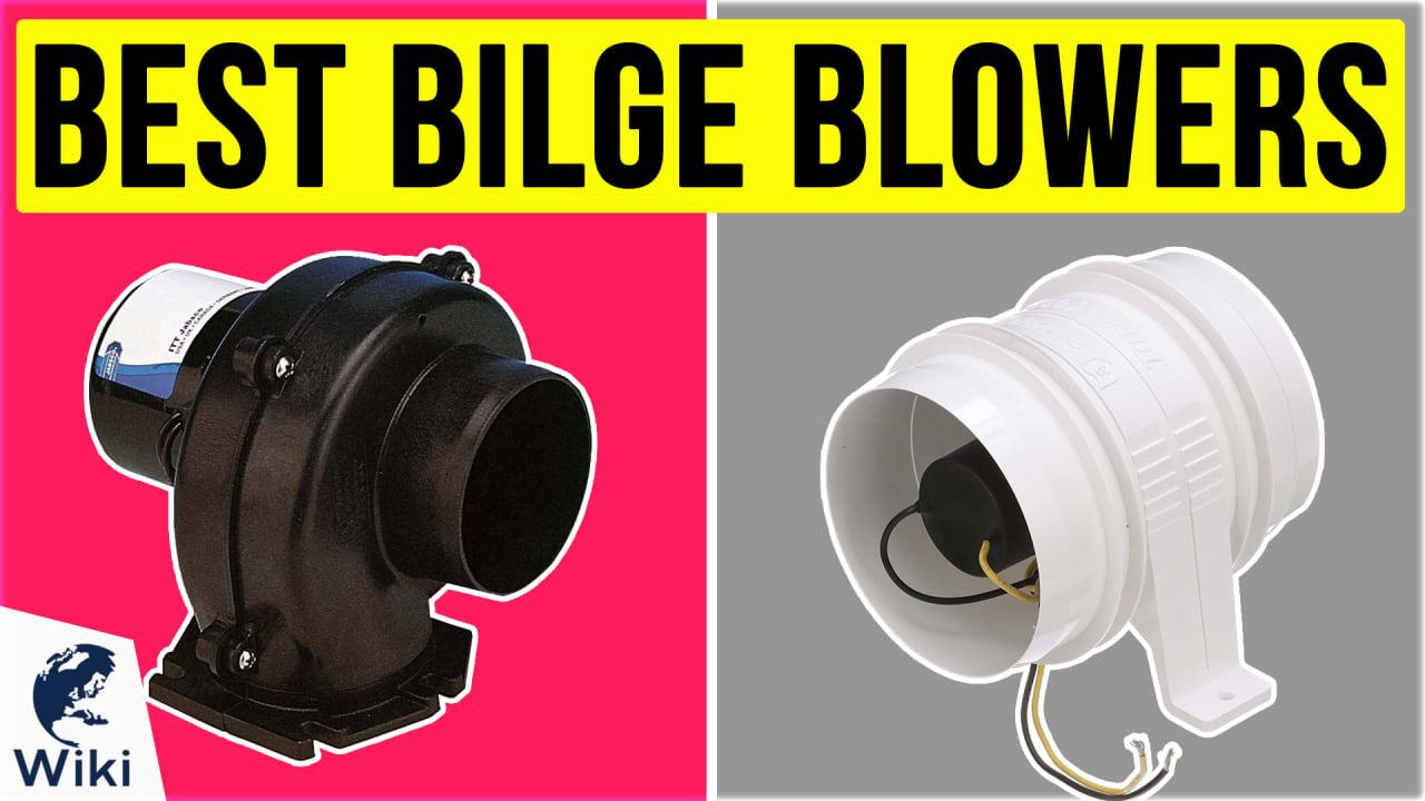 10 Best Bilge Blowers