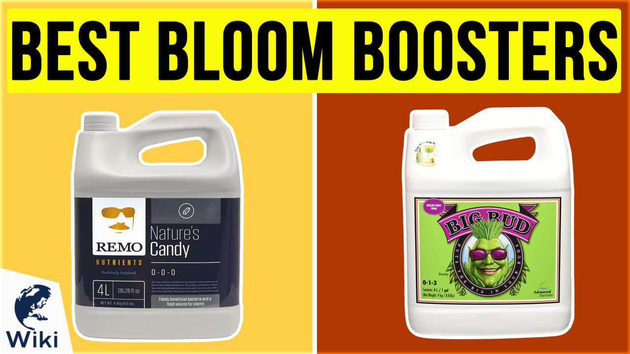 10 Best Bloom Boosters