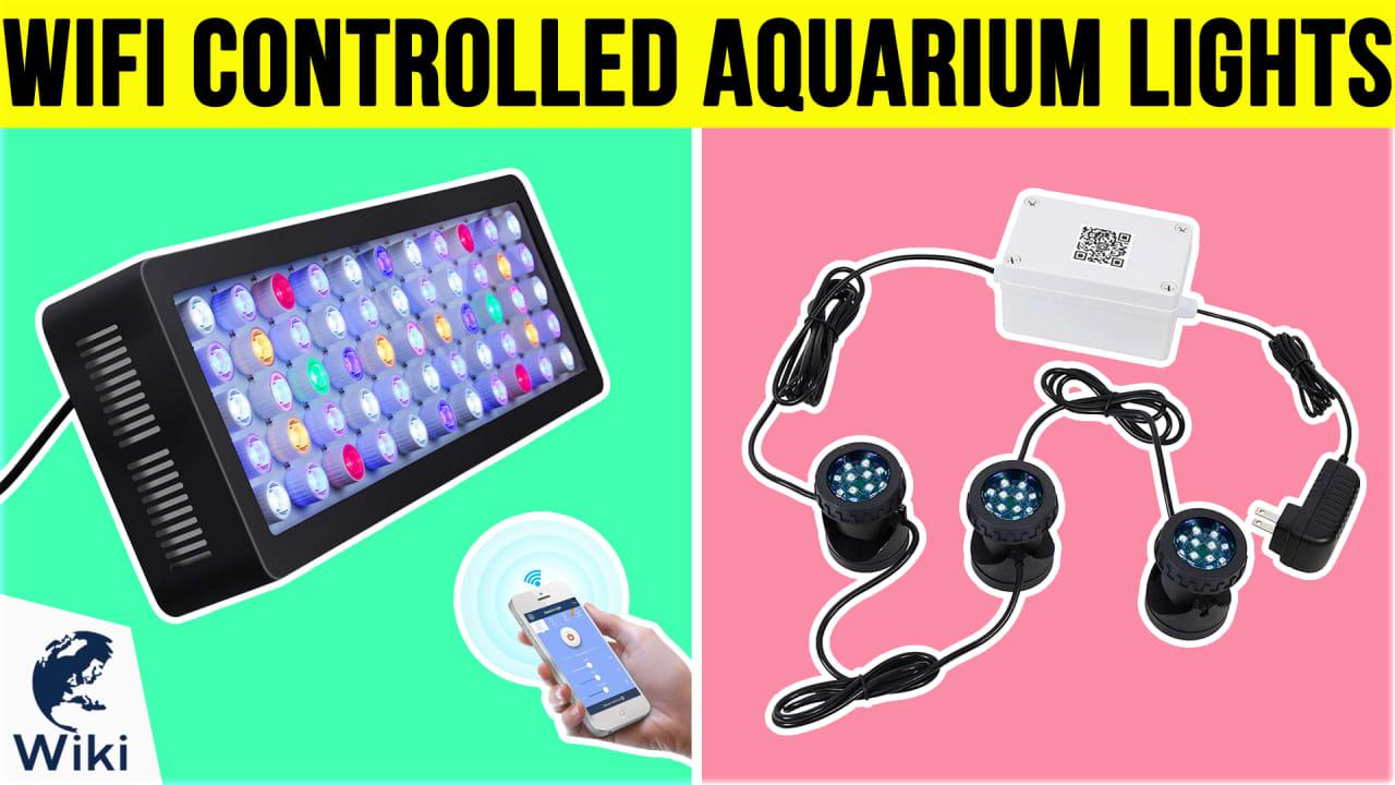 6 Best WiFi Controlled Aquarium Lights