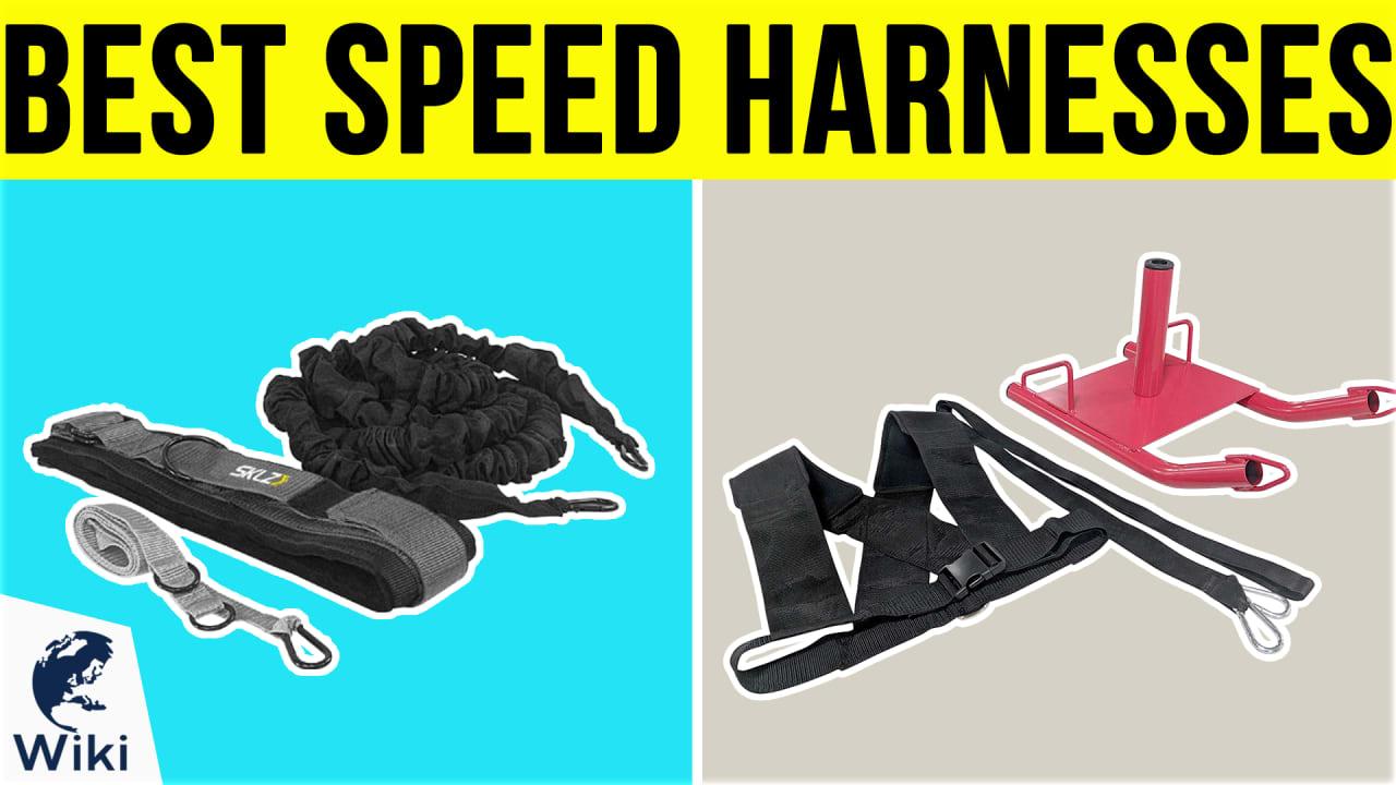 6 Best Speed Harnesses