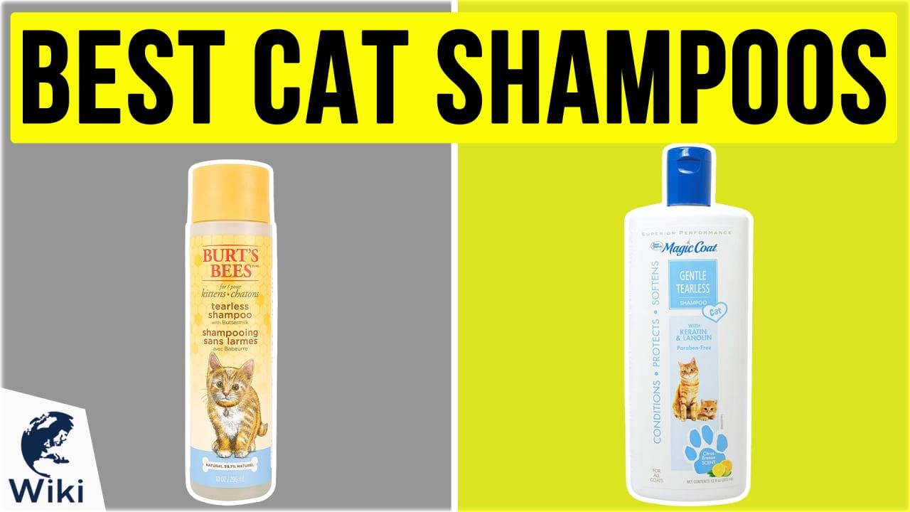 10 Best Cat Shampoos