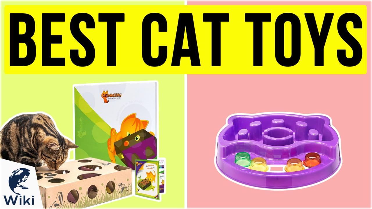10 Best Cat Toys