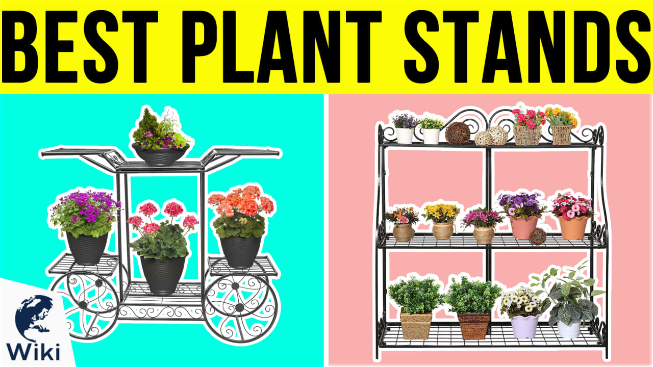 10 Best Plant Stands