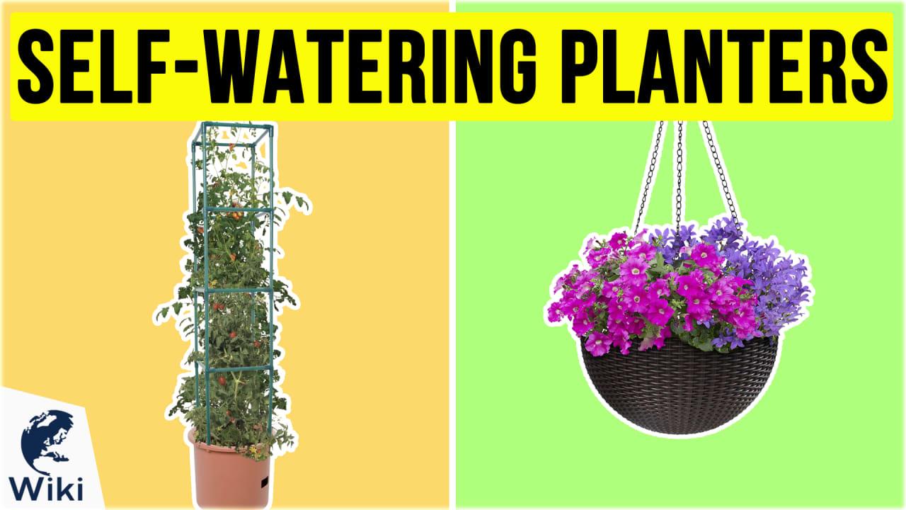 10 Best Self-Watering Planters