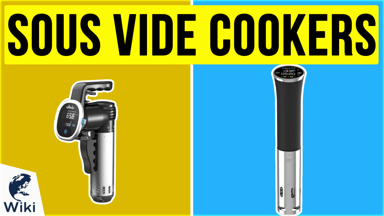 9 Best Sous Vide Cookers
