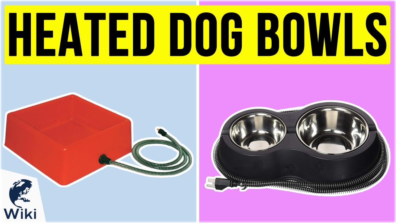 10 Best Heated Dog Bowls