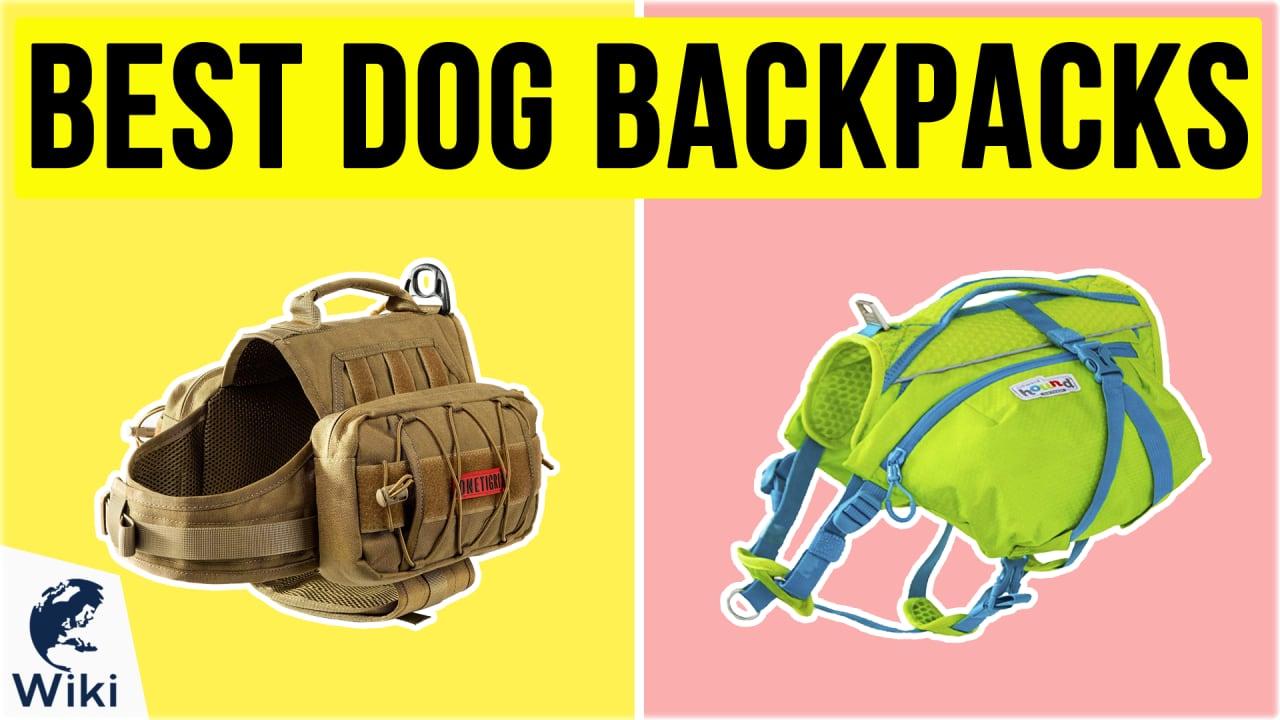 10 Best Dog Backpacks