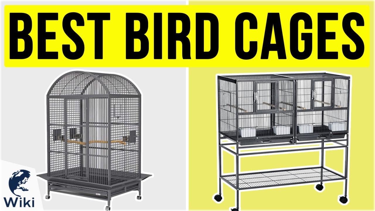 8 Best Bird Cages