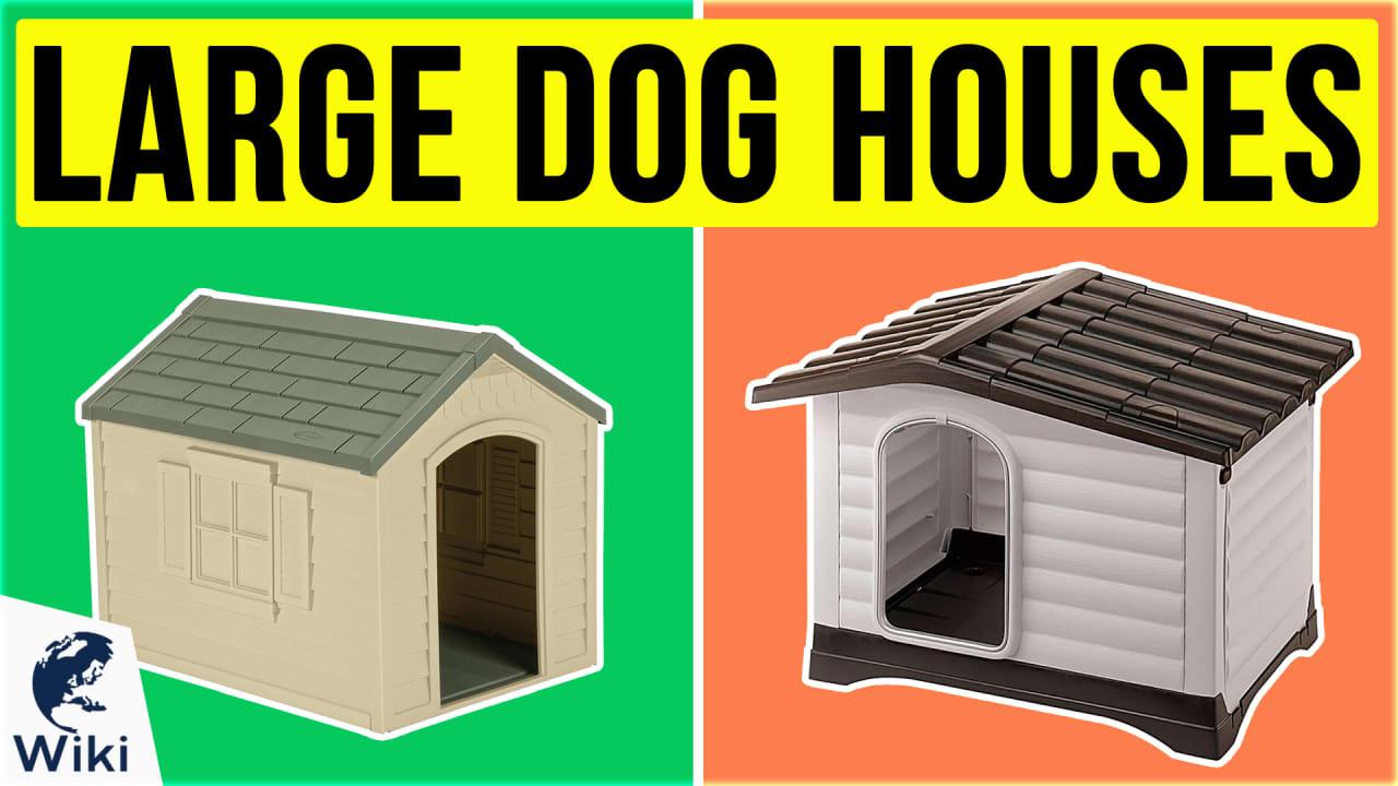 7 Best Large Dog Houses