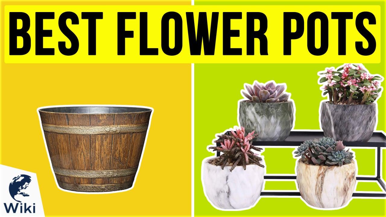 10 Best Flower Pots