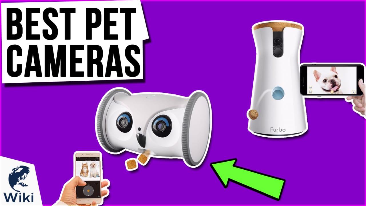 9 Best Pet Cameras
