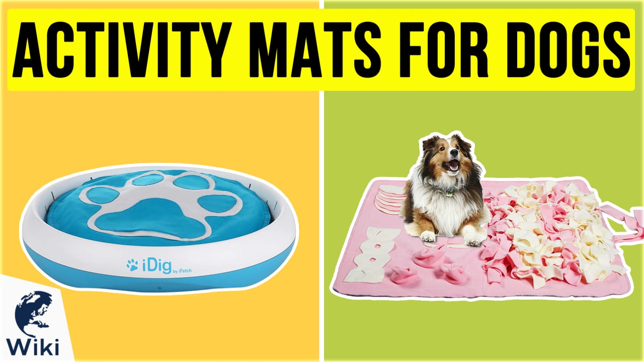 10 Best Activity Mats For Dogs