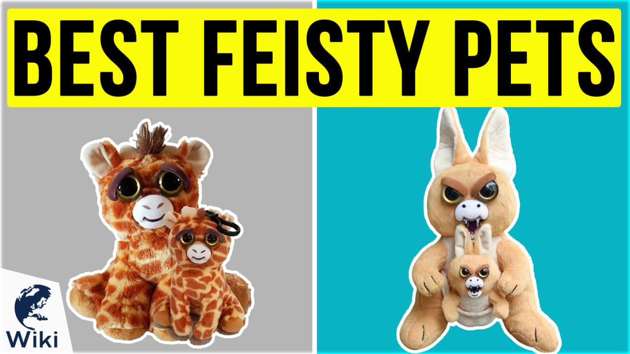 10 Best Feisty Pets