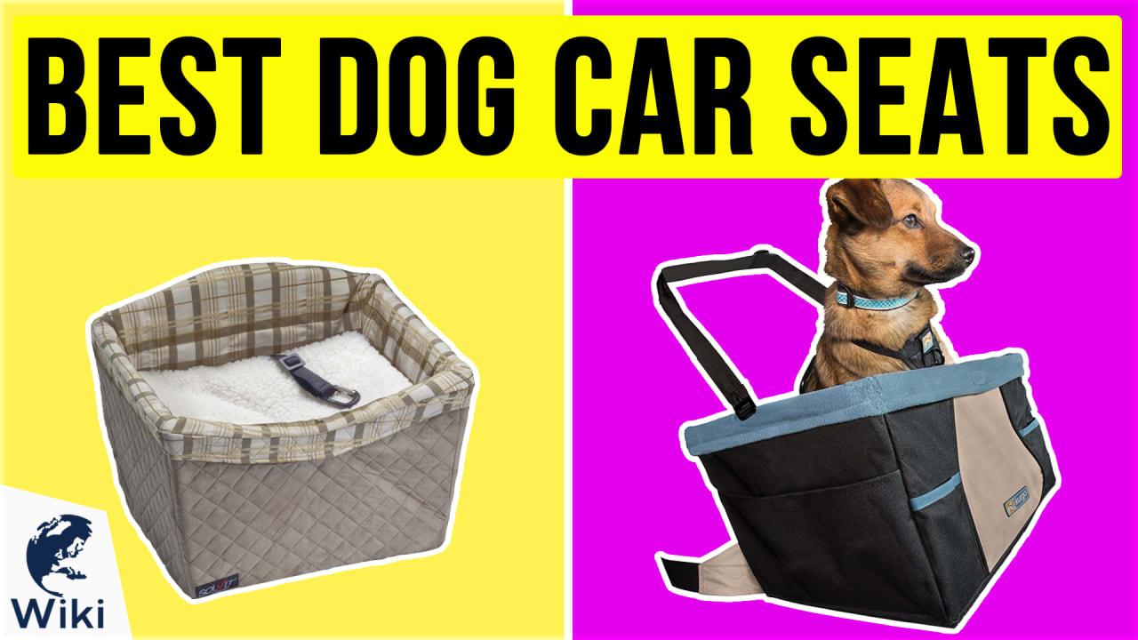 10 Best Dog Car Seats