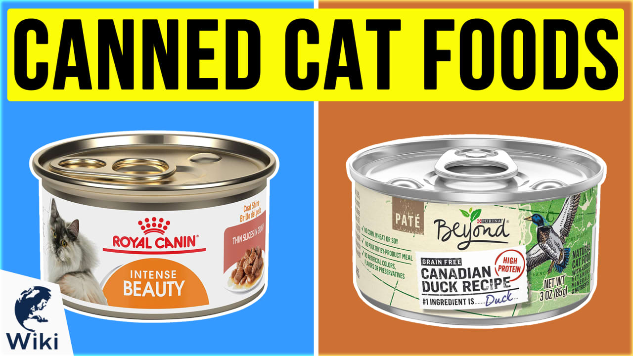 10 Best Canned Cat Foods