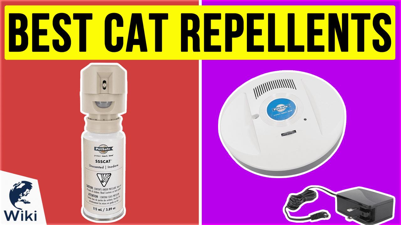 10 Best Cat Repellents
