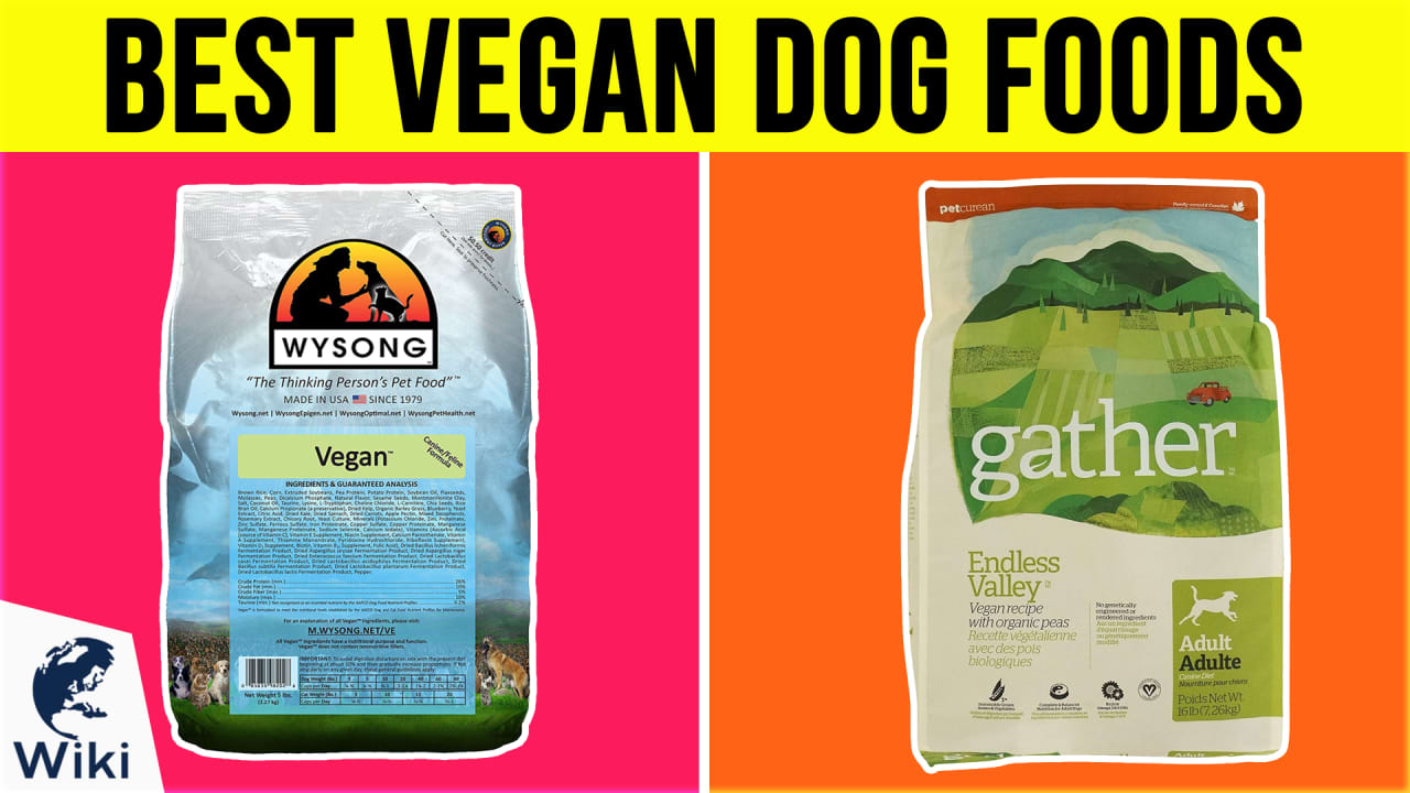 10 Best Vegan Dog Foods