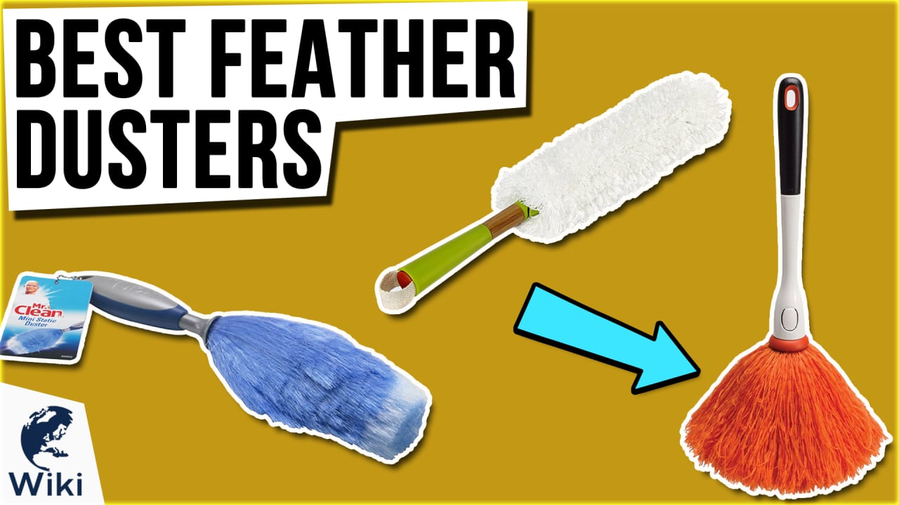 10 Best Feather Dusters