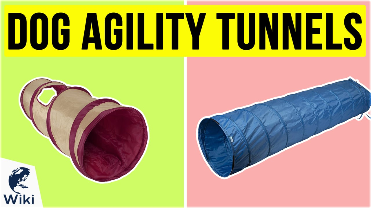 10 Best Dog Agility Tunnels
