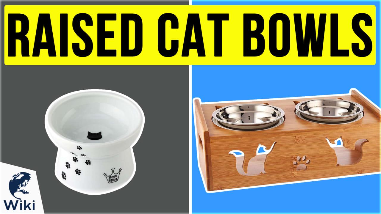 10 Best Raised Cat Bowls