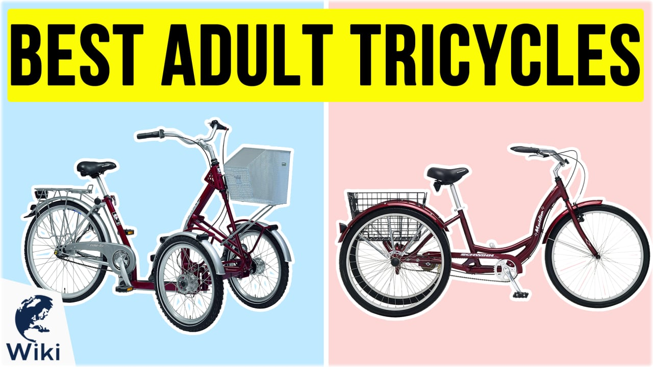 10 Best Adult Tricycles