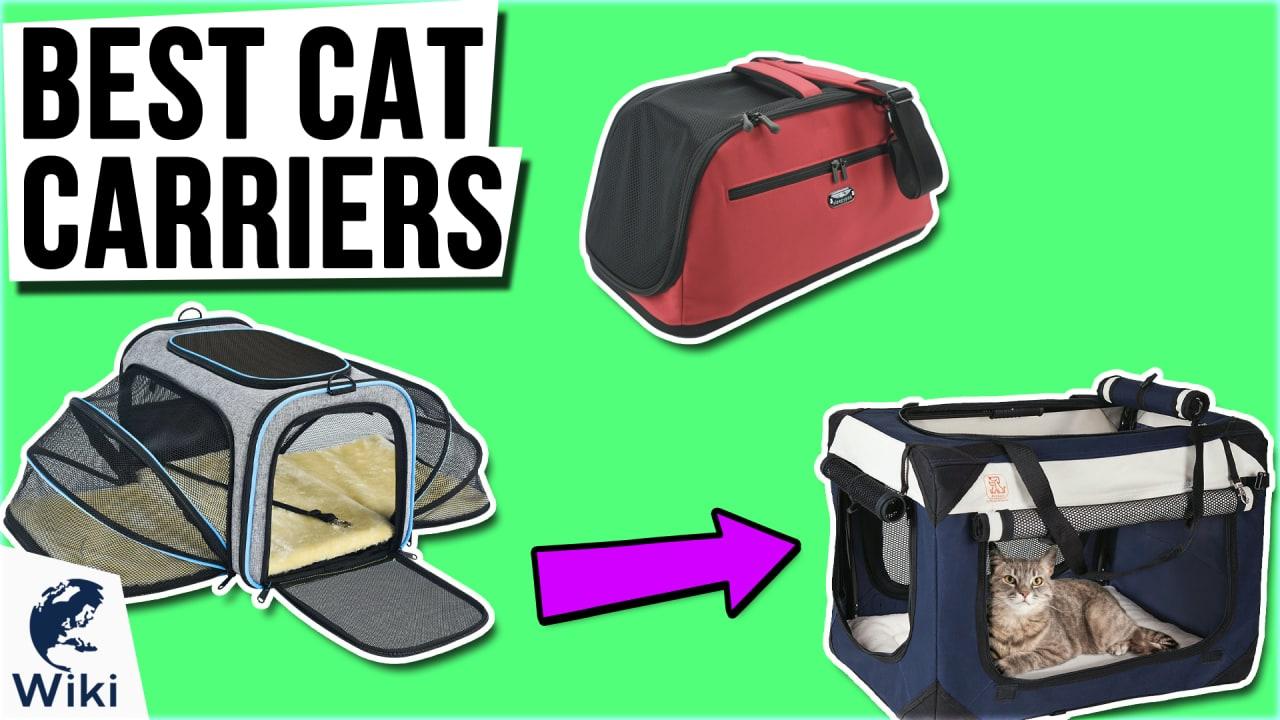 10 Best Cat Carriers