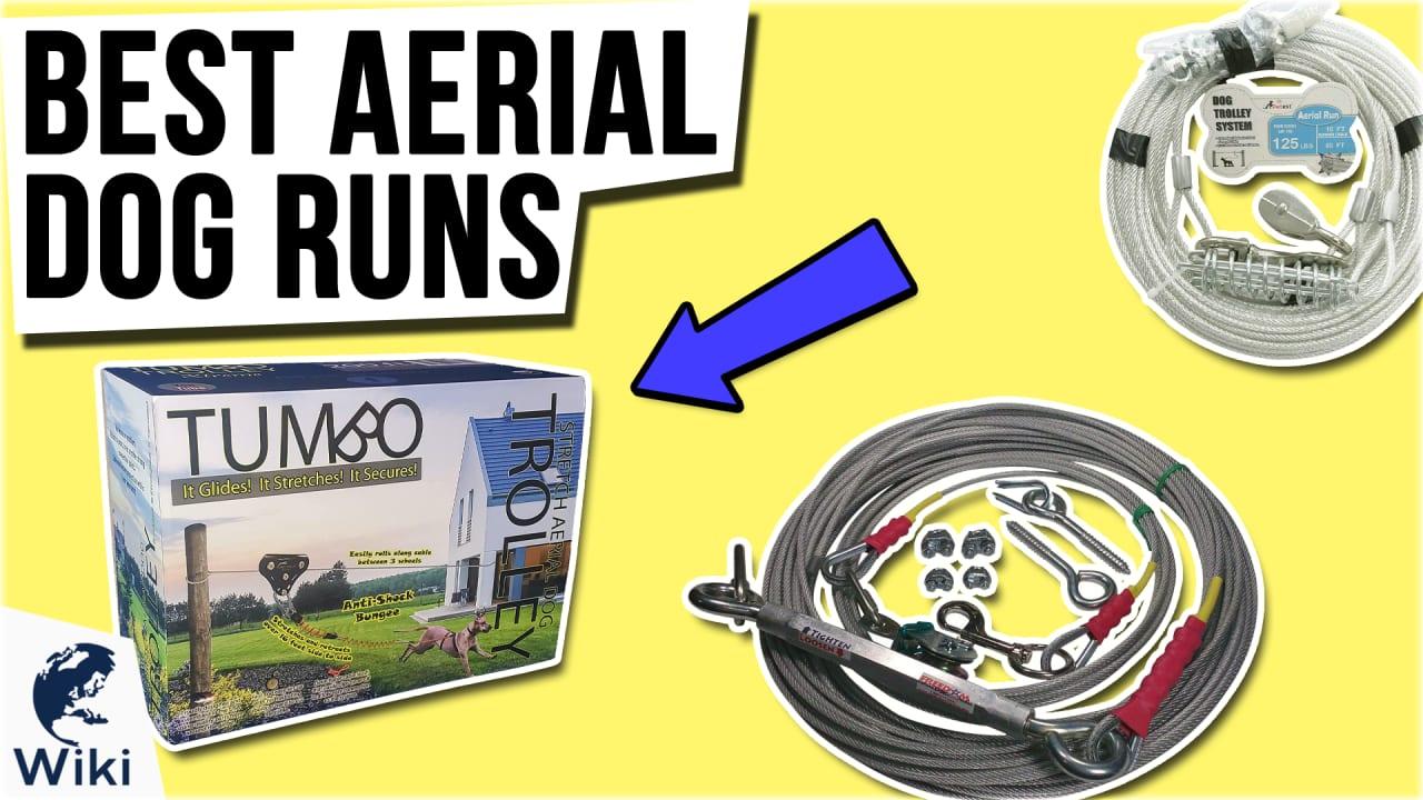 9 Best Aerial Dog Runs
