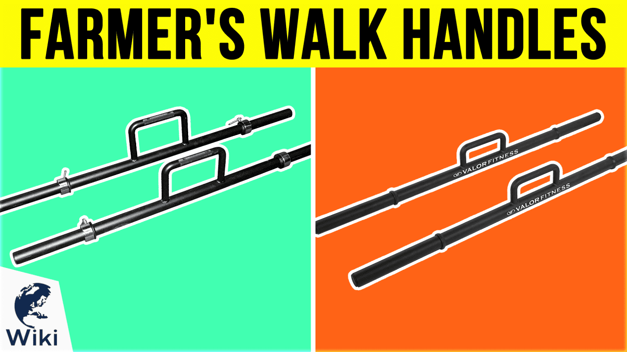 10 Best Farmer's Walk Handles